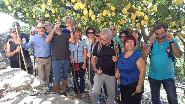 Lemon tour in Amalfi Coast